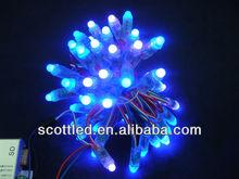 12MM led pixel light WS2811 LED pixel module,DC5V input,50pcs a string;ip68