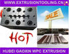 2013 Hot Sale! WPC Foam Profile Stainless steel Extrusion Dies Made in China