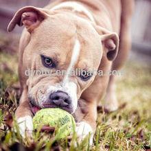 NEW HOT Pet Tennis Rubber Dog cat Chews Bounce tennis ball