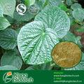 Las materias primas preparaciones a base de hierbas de kava kava p. E.