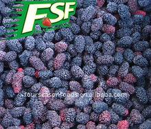 2013 New Crop Frozen Mulberry