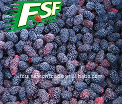 Frozen Mulberry, Frozen Mulberry Products Factory