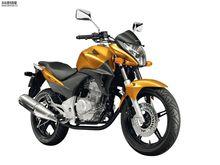 Best Sale Cool Off road TZ- CBR300 Motocicleta for Haojue 200cc 250cc Off Road Racing Moto Model