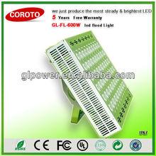 600w highest flux led Flood light with Premium precise optical lens angle system for Soccer airport lighting