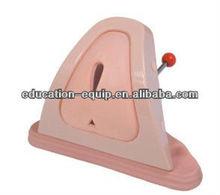 SE35296 Perineum Cutting & Suturing Training Simulator
