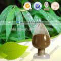 Folha de bambu natural p. E o pó