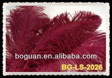 "Burgundy 26-28""Ostrich Plume"