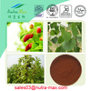 Mulberry Leaves Extract 1%~10% DNJ 1-deoxynojirimycin