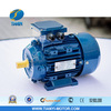 Quality Light weight three Phase 0.75HP electric motor