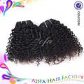 Natural negro 5a 100% grado sin procesar brasileño virgen de pelo rizado