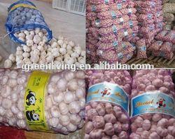2014 fresh garlic supplier (4.5cm,5.0cm,5.5cm.6.0cm)
