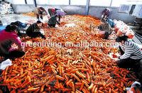 2014 fresh red carrot for saler(70-150g, 150-220g,220-290g)
