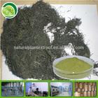 Natural 10%-95% wakame kelp extract fucoxanthin