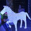 Hot sale led motif light for holiday street decoration