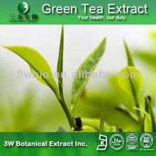 Top Quality Food Grade Supplement Japanese Matcha Green Tea Powder/Natual Green Tea Extract Bulk