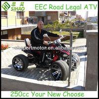 China 250cc Racing ATV Petrol Quad ATV with EEC & ISO