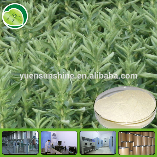 Best quality organic stevia extract