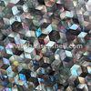 seashell tiles mosaic for wall decorative luxury tile