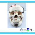 Maxilofacial de las placas, mini placas, placa de reconstrucción, placas faciales, implantes ortopédicos, placas de hueso