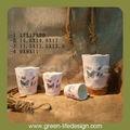 dolomite decoração de vasos de plantas de interior