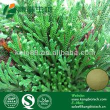 anti-inflammatory Cosmetic Ingredients Natural Amentoflavone Powder