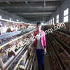chicken cage , battery cages laying hens,poultry farming equipment