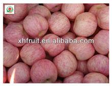 Fuji apple and fruit