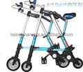 Una mini- plegable bicicleta de bicicletas para los adultos