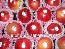 high sugar content fuji apple