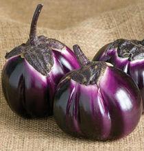 Heirloom Organic Purple Barbarella Eggplant Seed Rare Asian Solanum Vegetable Fruit Garden Seeds F109