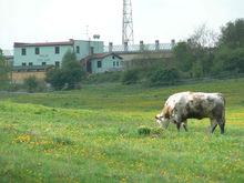 Farm for Sale in Slovak Republic EU