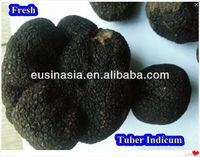 matured fresh black truffle tuber indicum for sale
