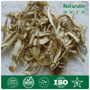 Dried raw herbs/Angelica sinensis/Dong Quai extract