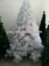 6ft White Pine tree
