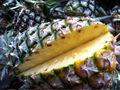 Tropiques fruits frais