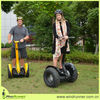 Windrunner stand up electric chariot for sale