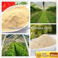 Leucina nitrato, suplemento nutricional, aminoácidos essenciais