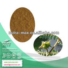 Factory Direct Supply Tribulus Terrestris Fruit P.E. 40% Tribulus Saponins; 45% Protodioscin