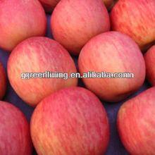 2014 fresh red fuji apple for sale ,China(apple:fuji, huaniu, gala, golden,qingguan, red star)