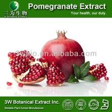 Food Grade Pomegranate Peel Powder/Pomegranate Extract Capsules/Pomegranate Juice Concentrate Powder