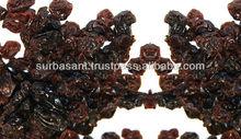 Black Raisins Supplier