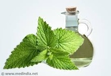 Natural Peppermint Extract Manufacturer supply: