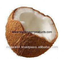 Coconut Price in India