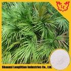 100% Natural Saw Palmetto Extract /Serenoa Repens /S