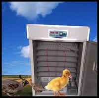 Hot sell Quail egg hatching machine with 2652 quail egg