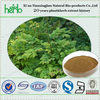 ISO standard natural black cohosh extract triterpene glycosides