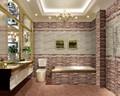بلاط السيراميك بلاط الحمام الفاخرة 300x600