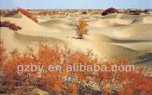 2014 Desert landscape decorative painting
