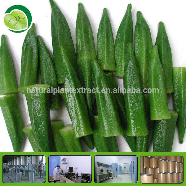 abelmoschus esculentus extract okra powder dried okra
