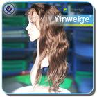 brazilian virgin human hair crazy halloween hair wig